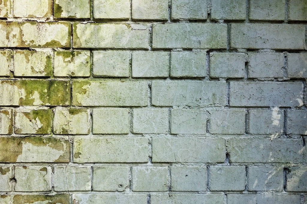 Damp wall