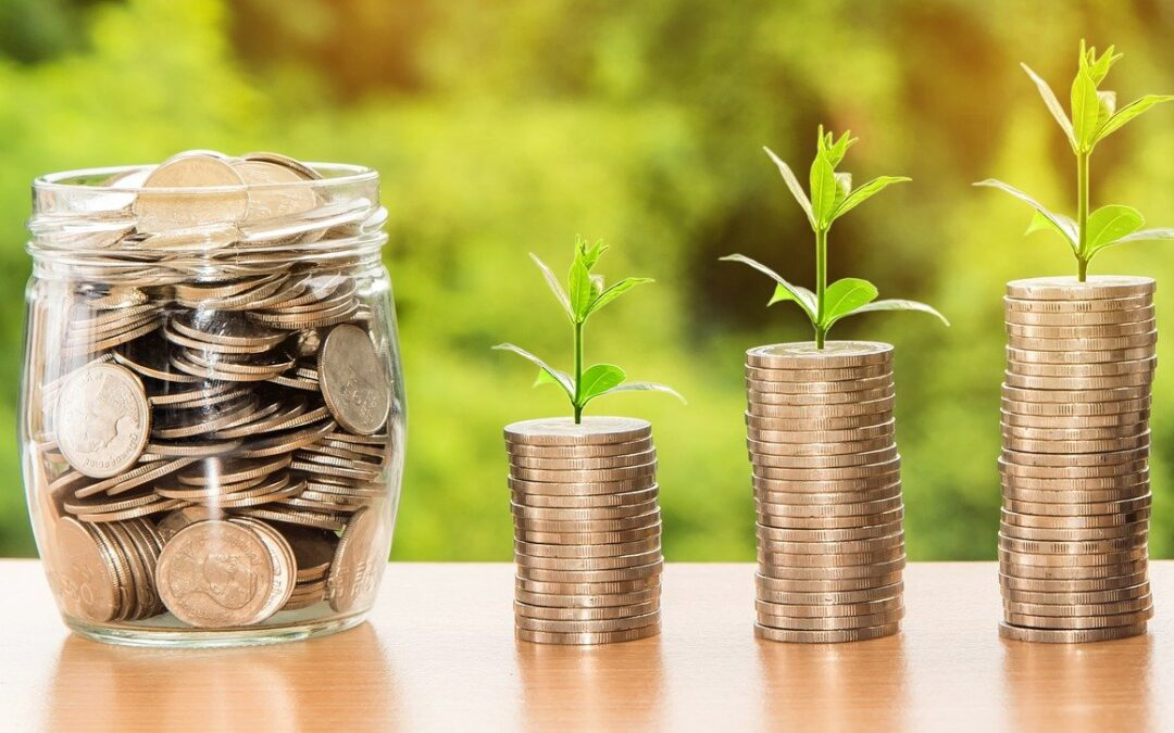 Avoid Money Woes at Your Company