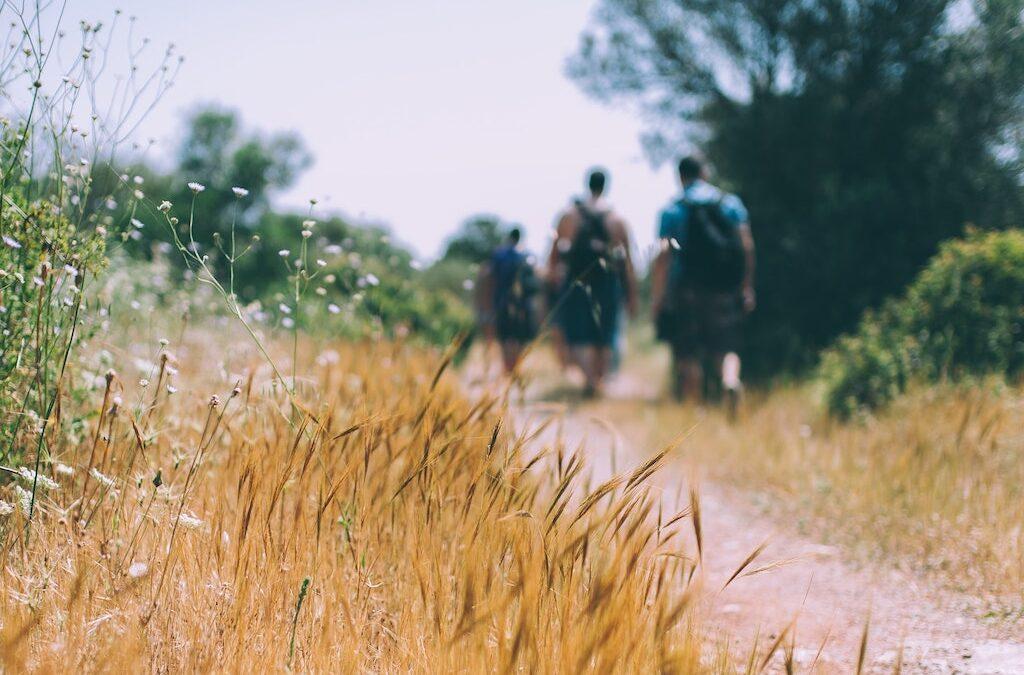 Benjamin Westover Idaho – Top Safety Tips When You Go For a Long Hike